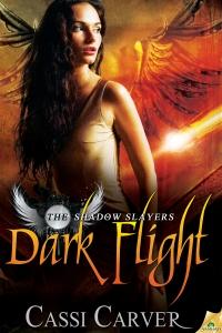 DarkFlight300