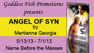 NBtM Angel of Syn Banner copy