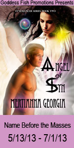 NBtM Angel of Syn Book Cover Banner copy