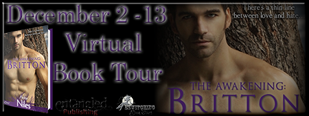 The Awakening Britton Banner 450 x 169